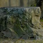 離れ南庭庭石
